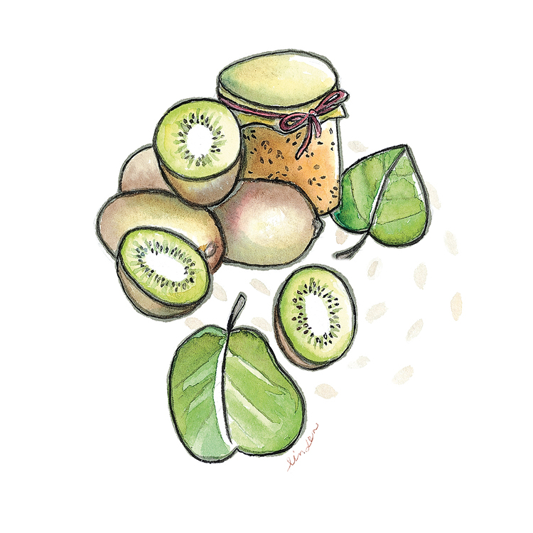 kiwi jam fruit illustration