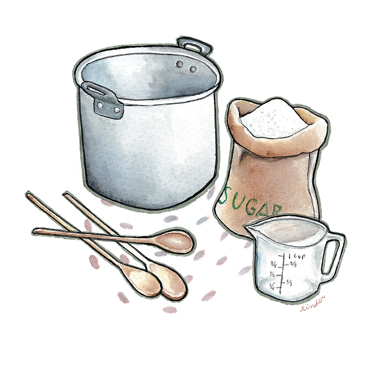 jam ingredients illustration
