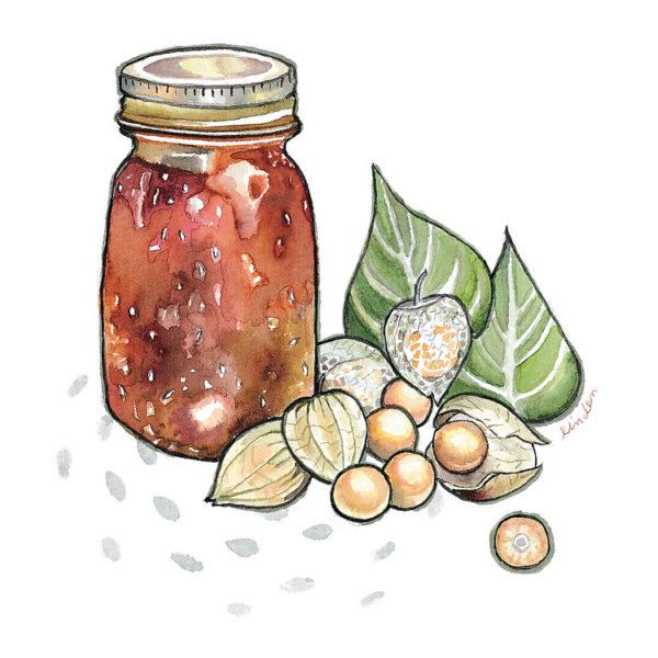 cape gooseberry jam illustration