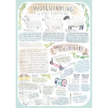 woolhandling guide